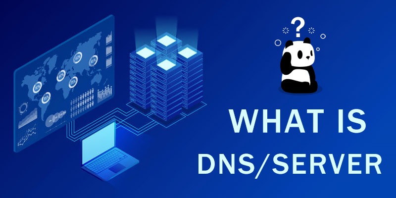 What Is DNS (Server)? Definition, Workflow & Possible Privacy Concerns
